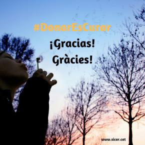 #DonarEsCurar recibe una gran acogida