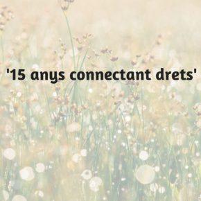 Jornada: '15 anys connectant drets'